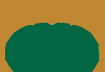 CMS - Commercio Metalli Semilavorati